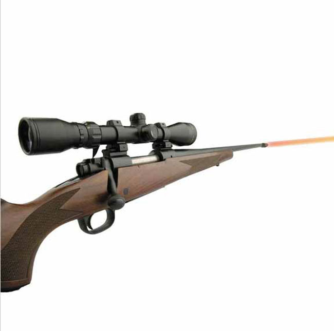pointeur laser chasse