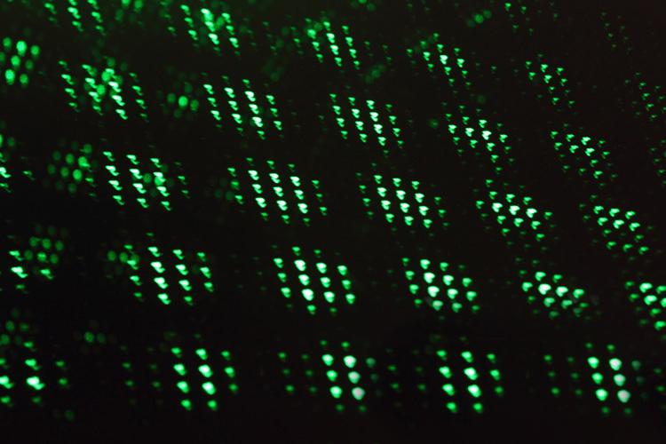 laser vert 25mw a vendre