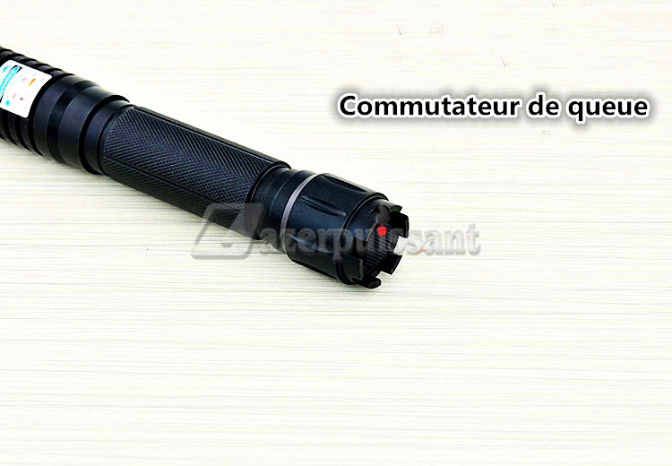 pointeur laser 10w